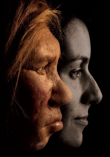 Surprise! 20 Percent of Neanderthal Genome Lives On in Modern Humans, Scientists Find
