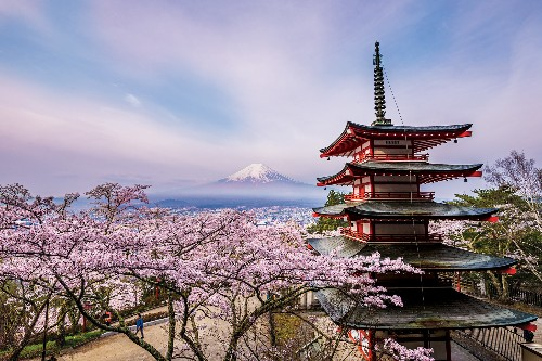 This Man Photographed Mount Fuji for 7 Years—Here's the Result