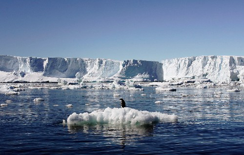 Antarctic Ice May Be Held in Place By Small Plugs—for Now