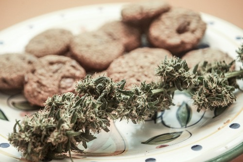 Sniffing Out What's 'Edible,' Legal in Marijuana Dining