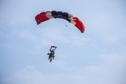 Dogs Are Now Parachuting From the Sky to Help Save Wildlife