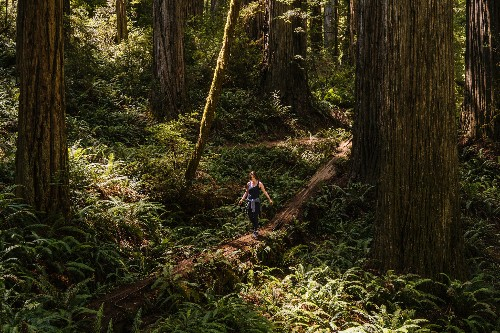 20 dreamy photos of California's natural wonders