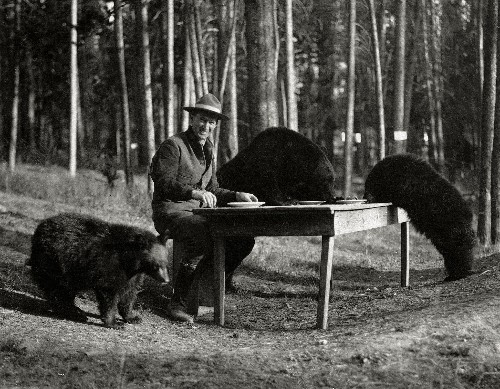 Vintage Images of Yellowstone Show the Park's Wild Beauty
