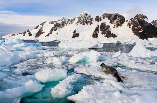 New Theory for Why Antarctic Sea Ice Is Growing