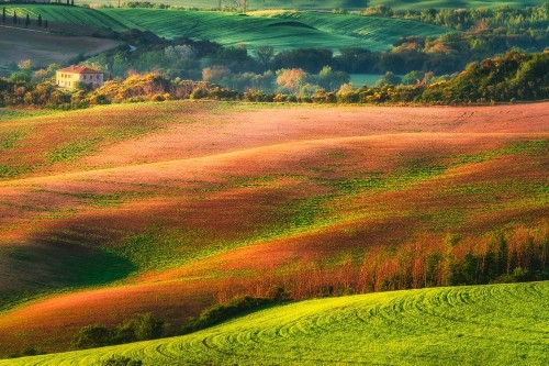 Painted Tuscany Photo by Chiara Salvadori — National Geographic Your Shot
