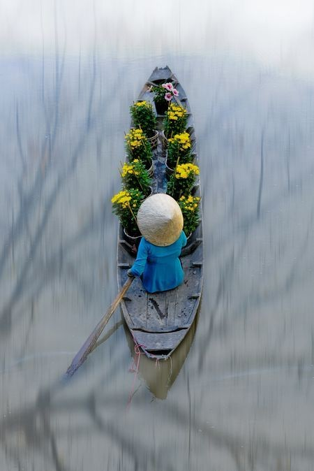 Flower transporter Photo by Harley Pham — National Geographic Your Shot