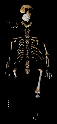 This Neanderthal Child Grew Up Just Like Us