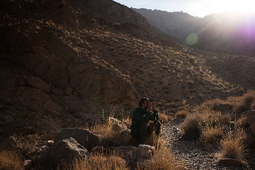 From poachers to protectors, meet the rangers of Masjed Mountain