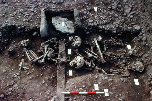 This Mass Grave May Belong to 'Great Viking Army'