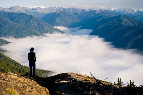 Magical Must-Do Hikes in Olympic National Park