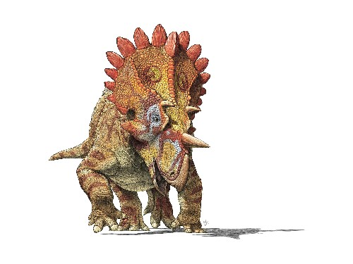 Meet 'Hellboy': New Spiky-Headed Dinosaur Found