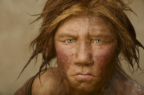 Neanderthals Lived in Small, Isolated Populations, Gene Analysis Shows