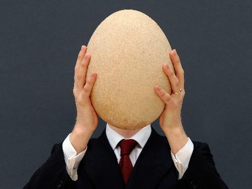 Elephant Bird Egg Auction Inspires a Hunt