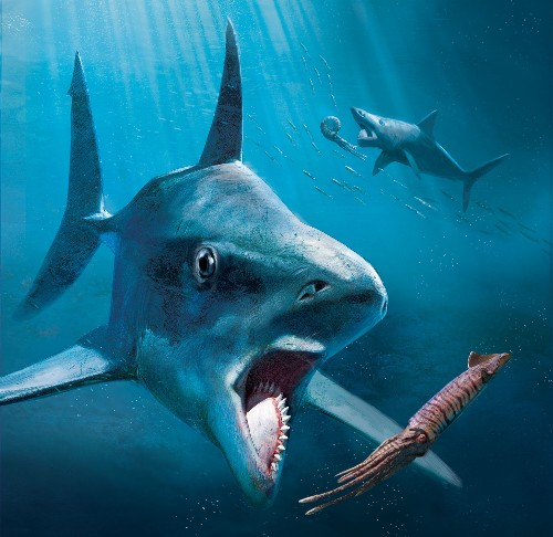 This mysterious ancient predator had a killer jaw