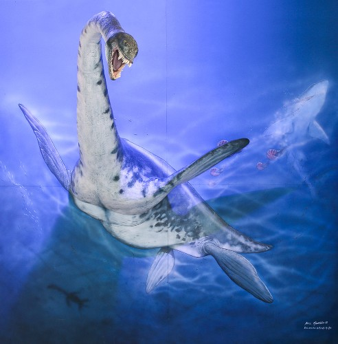 "Oldest Antarctic ""Sea Monster"" Found"
