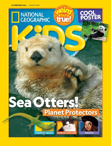 Magazine Extras!