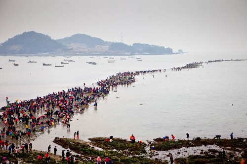 Jindo Sea Parting: Science Behind the 'Magic'