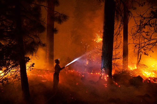 How Fire, Once a Friend of Forests, Became a Destroyer