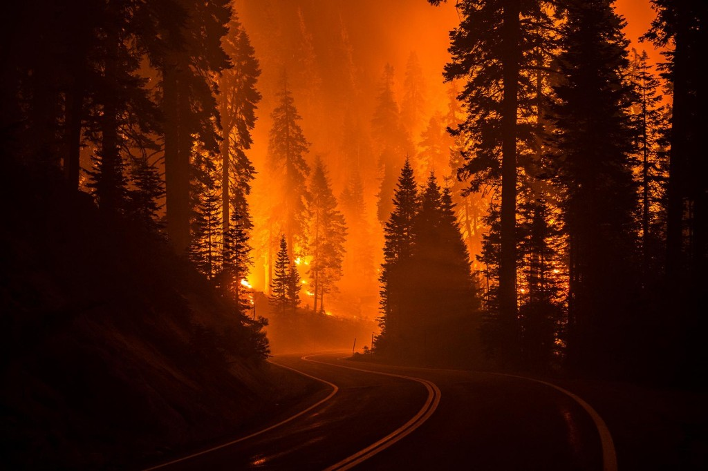 The science connecting wildfires to climate change