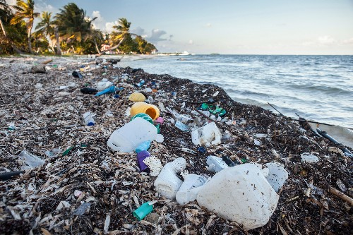 Ocean Trash: 5.25 Trillion Pieces and Counting, but Big Questions Remain