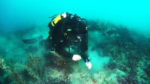 Six underwater volcanoes found hiding in plain sight
