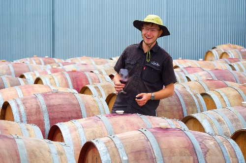 South Australia's Adventures of a Lifetime: Learn About Wine
