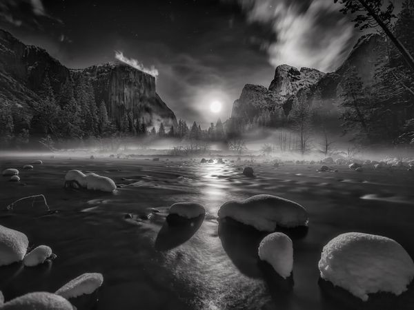 """""""Nature in Black and White"""" Story and Pictures"""