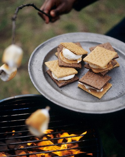 The Gooey Story of S'mores