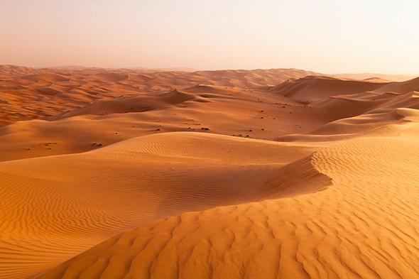 Surfing Sand in the Arabian Desert