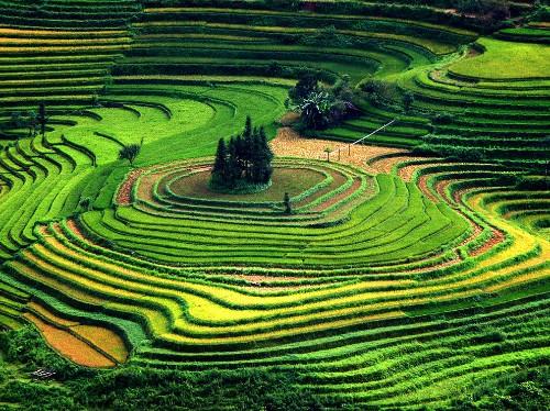 Vietnam Photos