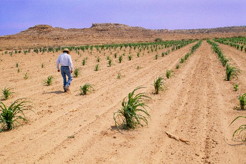 Indigenous farming practices failing as climate change disrupts seasons
