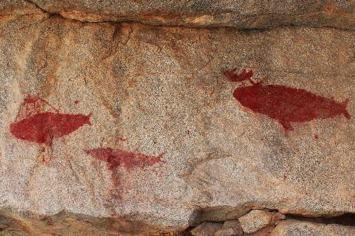 Dramatic Whale Hunts Depicted in Ancient Rock Art