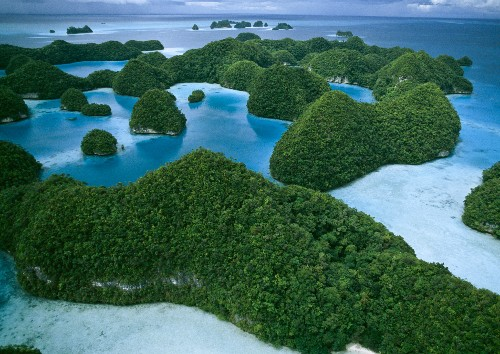 Several Nations Announce Massive Marine Reserves in the Pacific