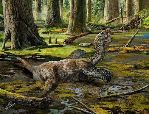'Mud Dragon' Dinosaur Unearthed—By Dynamite