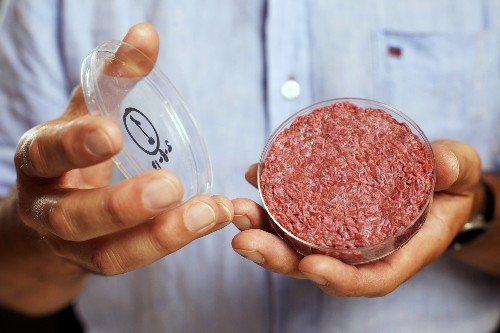 Will Your Next Burger Come From a Petri Dish?