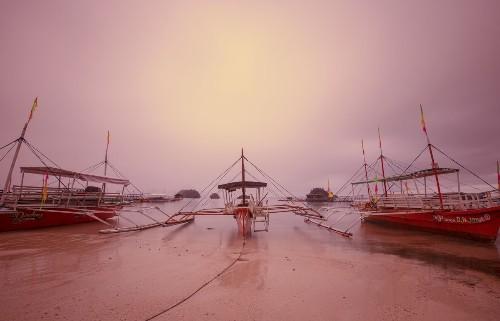 Good Morning Britania Photo by Jelieta Walinski — National Geographic Your Shot