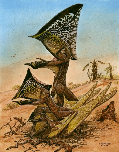"New Flying Reptile Found in ""Unprecedented"" Pterosaur Boneyard"