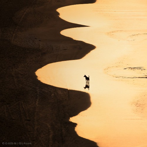 Golden mirror Photo by Q-lieb In — National Geographic Your Shot