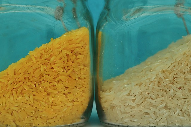Rebecca Rupp: I'm Pro-GMO and Here's Why