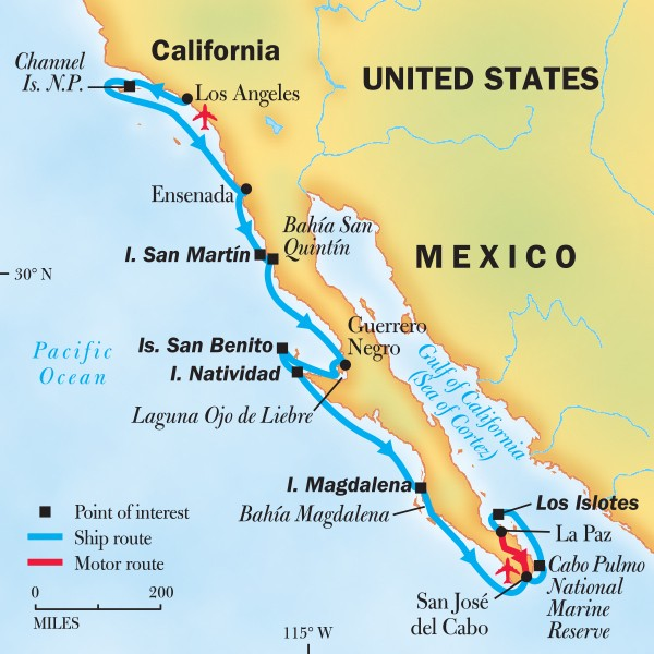Cruise From Southern California To Mexico: Whale & Wildlife Cruise