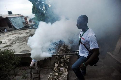 Mosquitoes Carry Painful Chikungunya Virus to Americas