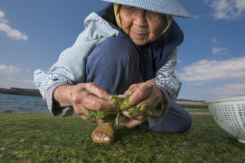 Geography May Be Key to a Long, Healthy Life