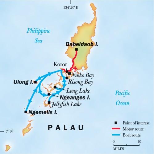 Trip To Palau: Palau Snorkeling Tour