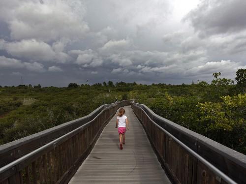 Florida by Land: Take a Rainy Day Walk