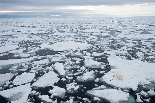 Arctic Ice Isn't Doomed Yet—Here's How to Save It