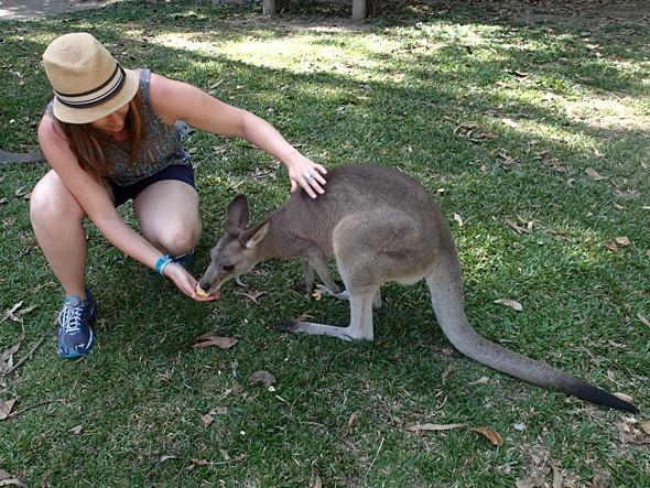 Australia: Animal Lover's Paradise