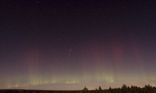 Spectacular Meteor Shower This Week: How to See It