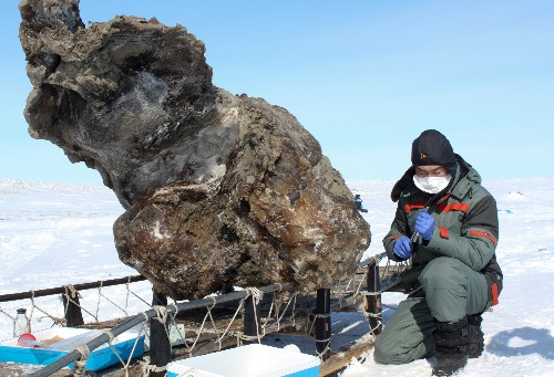 Can Purported Mammoth Blood Revive Extinct Species?