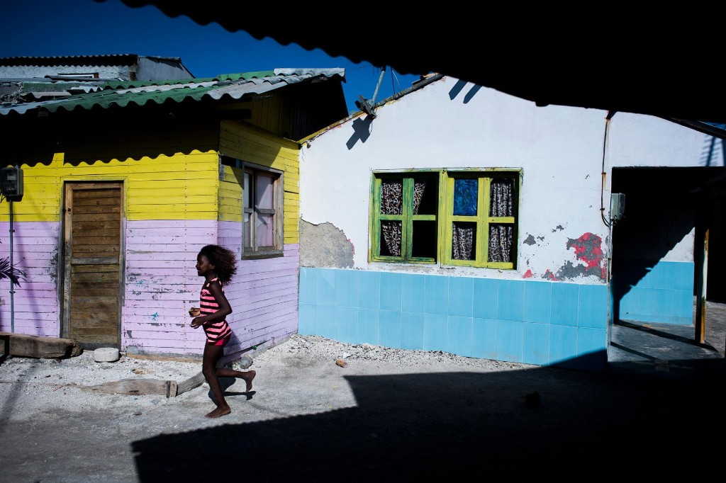 The most crowded island on earth–and four more captivating stories