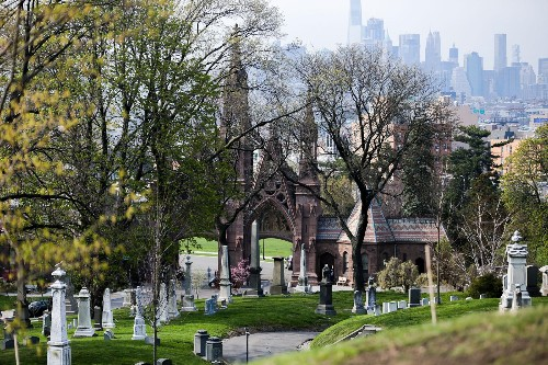Why cemeteries are a surprising source of life